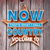 Various Artists - NOW That's What I Call Country, Vol. 10  artwork