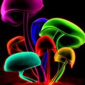 Neon Wallpapers – Neon Arts & Neon Pictures HD