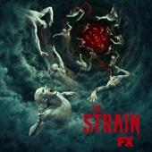 The Strain - The Strain, Season 4  artwork