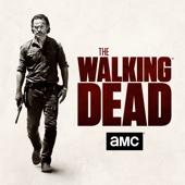 The Walking Dead - The Walking Dead, Season 7  artwork