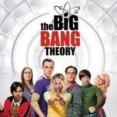 The Big Bang Theory - The Big Bang Theory, Season 9  artwork