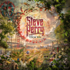 Steve Perry - Traces  artwork