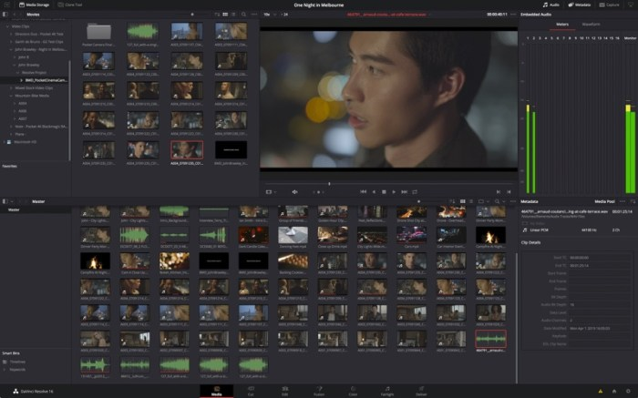 DaVinci Resolve Studio Screenshot 06 9oof69n