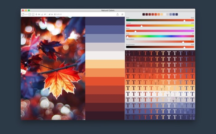 Color Palette from Image Screenshot 1 136z45n