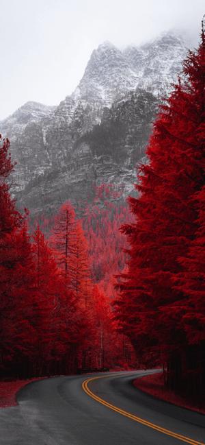 Wallcraft – Wallpapers HD, 4K Screenshot