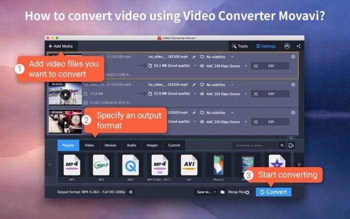 1_Video_Converter_Movavi.jpg