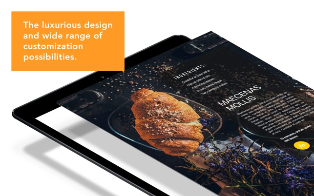 Cookbook Author  - Templates Screenshot