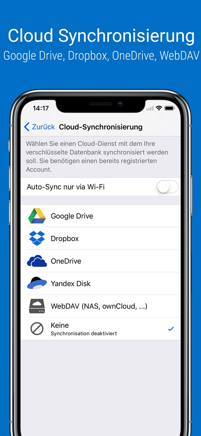 SafeInCloud Screenshot
