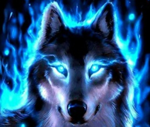 Amazing Wolf Wallpapers 4