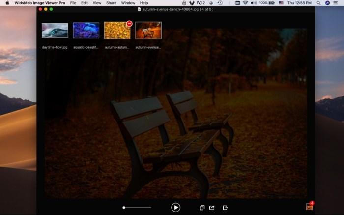 WidsMob Viewer Pro Screenshot 01 9ov19jn