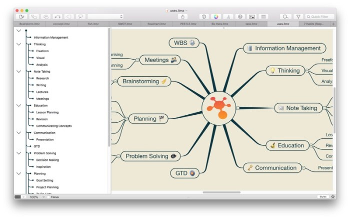 iThoughtsX (mindmap) Screenshot 01 1353w1n
