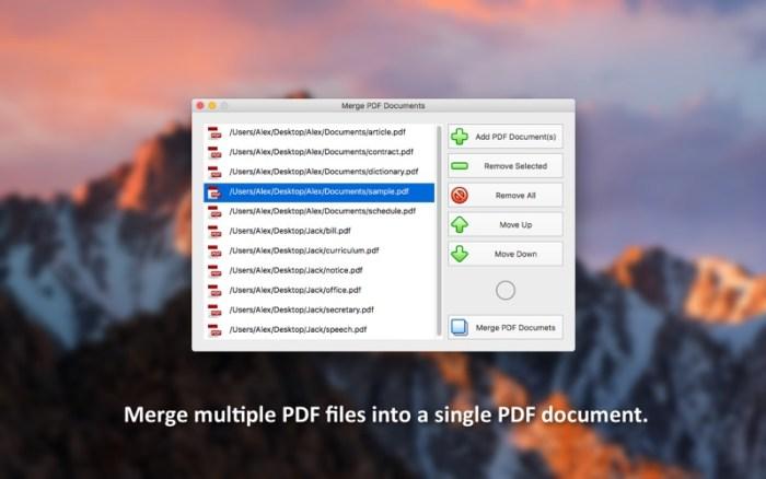 1_PDF_Plus_Merge_Split_PDFs.jpg