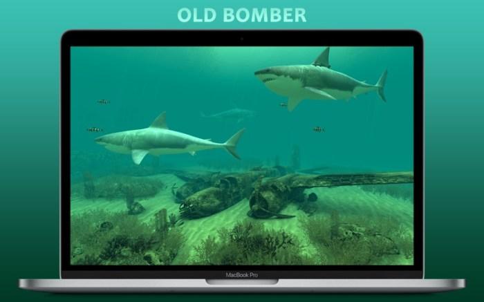 Sharks 3D Screenshot 02 k6fachy
