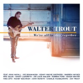 Walter Trout - We're All In This Together  artwork