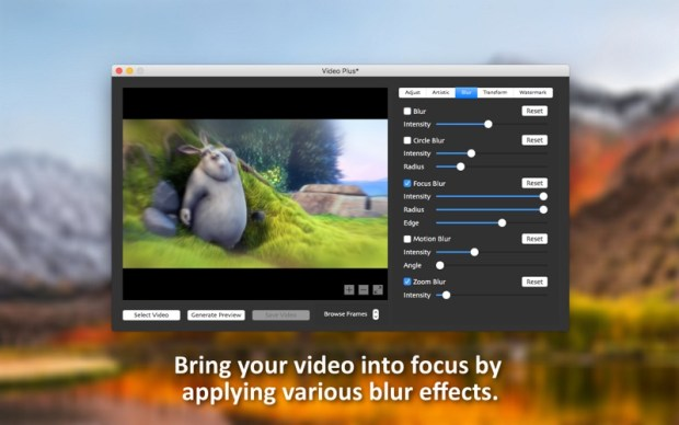 5_Video_Plus_Watermark_Videos.jpg