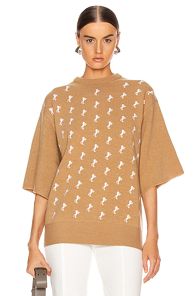 Chloe Embroidered Horse Sweater in Brown. - size M (also in L,S,XS)