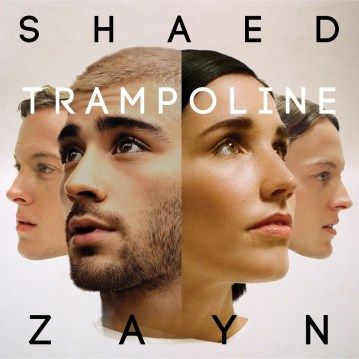 Image result for trampoline album art