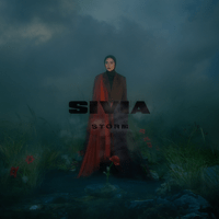 Storm - Single - SIVIA