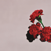 John Legend - Love in the Future (Expanded Edition)  artwork