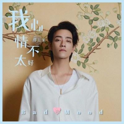 鄭雲龍 - 我心情不太好(《我的奇怪朋友》影視劇片尾曲) - Single