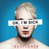 Badflower - OK, I'M SICK  artwork