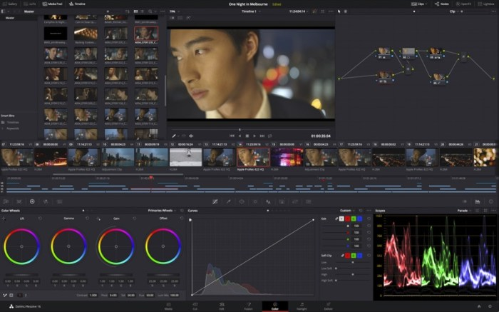 DaVinci Resolve Studio Screenshot 03 9oof69n