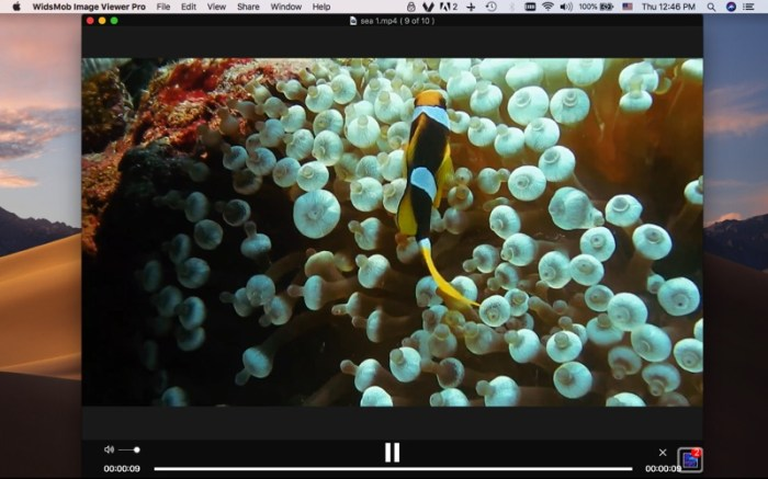 WidsMob Viewer Pro Screenshot 05 9ov19jn