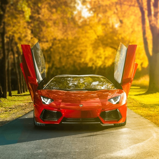 In addition, you can immediately put a picture on your desktop. Get Sports Car Wallpapers Pictures Picture Idokeren