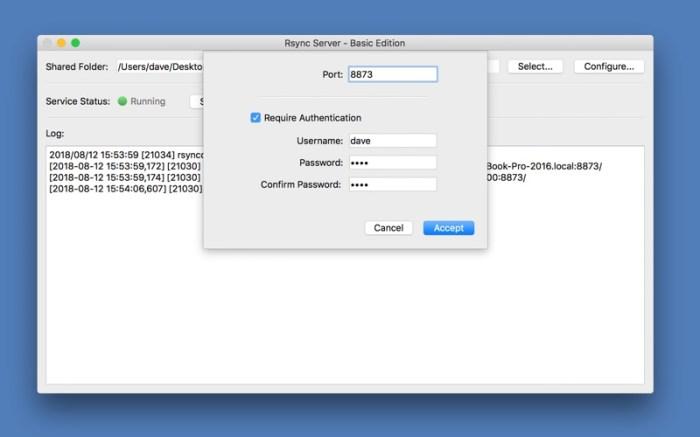 Rsync Server - Basic Edition Screenshot 03 1353w1n