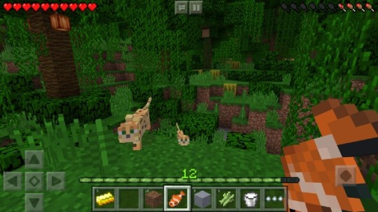 Minecraft on the App Store Screenshots