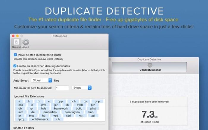 4_Duplicate_Detective_Cleaner.jpg