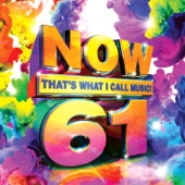 Various Artists - Now That's What I Call Music, Vol. 61  artwork