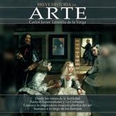 Carlos Javier Taranilla de la Varga - Breve historia del arte [Brief history of art] (Unabridged)  artwork