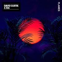 David Guetta & Sia - Flames artwork
