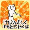 hiroyuki kumagai - けたたましくキモ激しく動くネコ  artwork