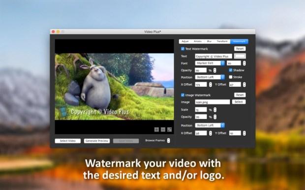 1_Video_Plus_Watermark_Videos.jpg