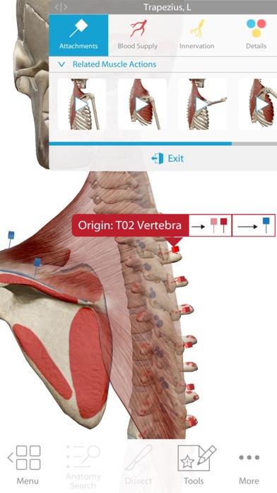 Screenshot do app Human Anatomy Atlas 2018