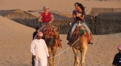 Abu Dhabi Camel Safari