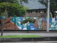 DSCF0599