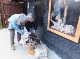 Isabella (left) and Jane Deane sorting fleece at Leewood, Dartmoor National Park. Nick Viney's painting of shearing can be seen to the right