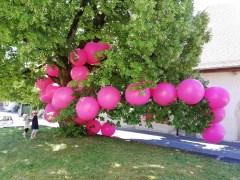 LE GRAND COLLIER, ateliers ouverts, Arnex-Sur-Orbe 2018 65 ballons de baudruches rose pink de 90 cm de diamètre déposé, un tilleul .
