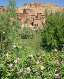 """Découvrir la vallée des roses au pied du Haut Atlas avec Isabelle Barrandon et son stage """"Dessin, méditation, jeûne intermittent et randonnée au Maroc"""" pour des pages colorées de votre carnet de voyage."""