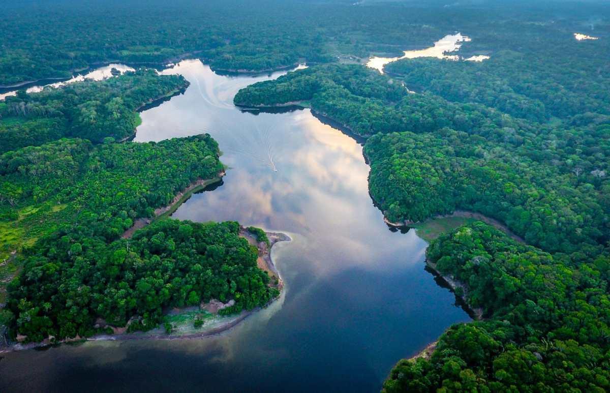Brésil : L'Amazonie