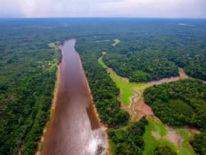 Amazonie Dolphin Lodge