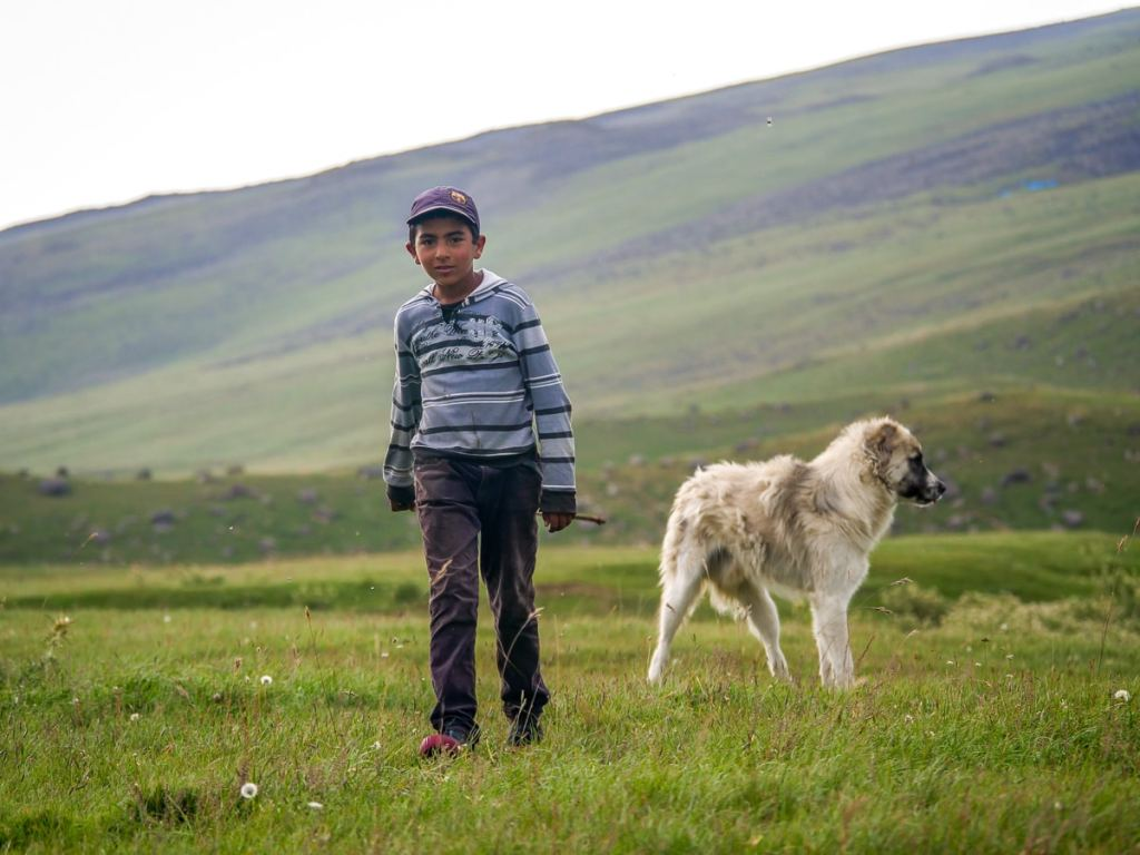 enfants yézidis arménie