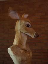 petit buste de biche 2 posée sur mannequin sans tête