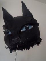 chat noir yeux bleus