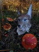 loup aux grandes oreilles