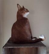 chat assis en papier