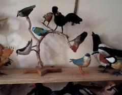 série oiseaux en papier